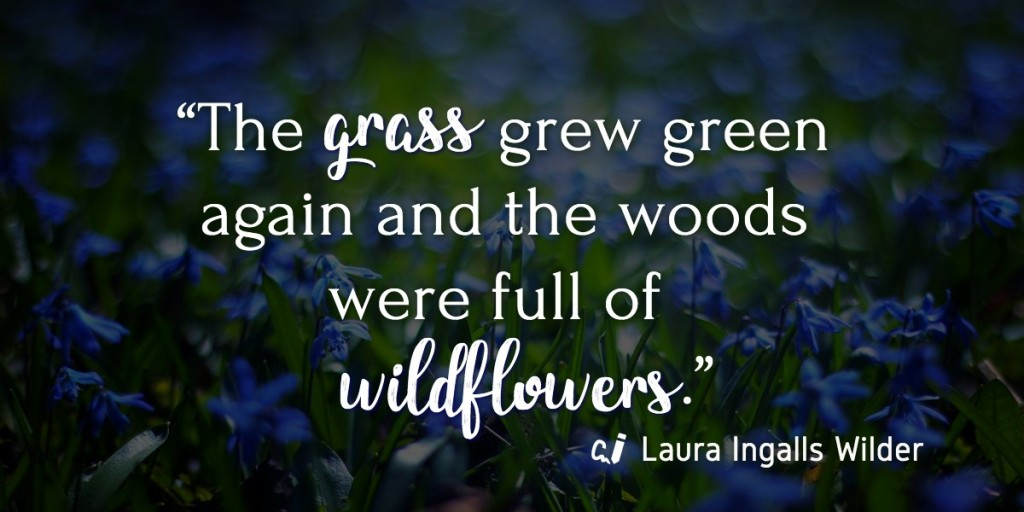 """The grass grew green again and the woods were full of wildflowers."" Laura Ingalls Wilder"